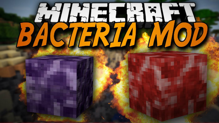 bacteria-for-minecraft
