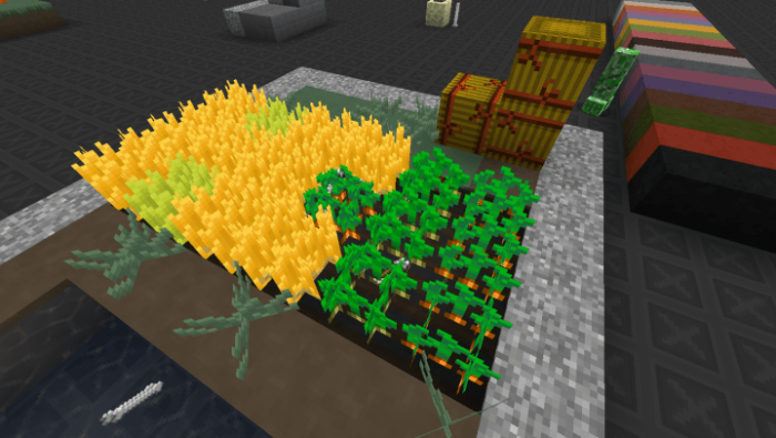 tantum-resource-pack-2