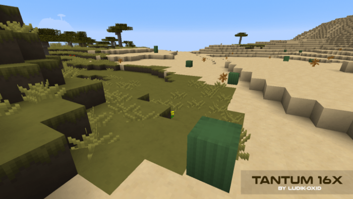 tantum-resource-pack-8