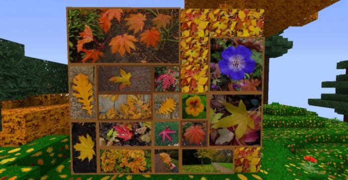 zedercraft-autumn-hd-resource-pack-10-700x362