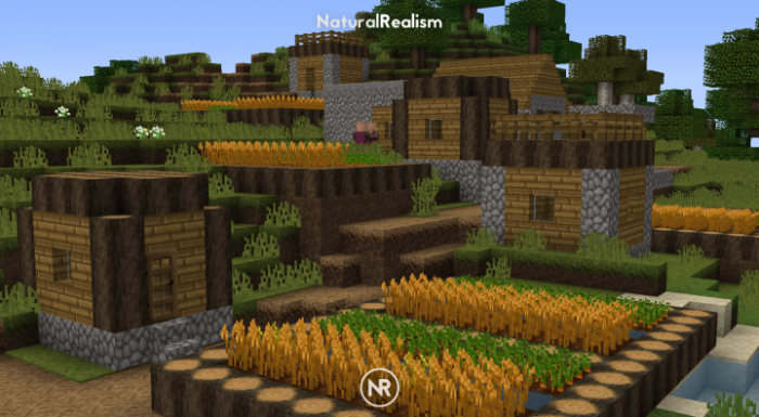 naturalrealism-resource-pack-2-700x385